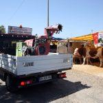 Kartal Belediyesi, Kurban Bayramı Hazırlıklarını Tamamladı (2)