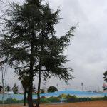 Kartal Belediyesi, Kartala 3 yeni park daha kazandırıyor (17)