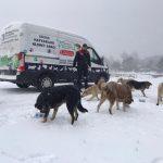 Kartal Belediyesi_nin Karla Mücadelede Ekipleri 724 İş Başında (12)